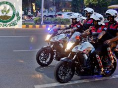 Dolphin Force