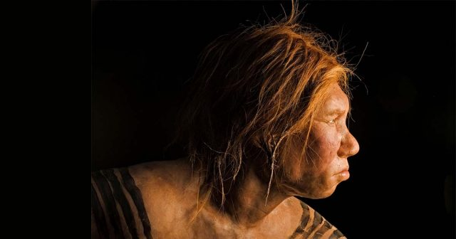 Denisovans: Ancient Human Appearance Reconstructed By Israeli Scientists